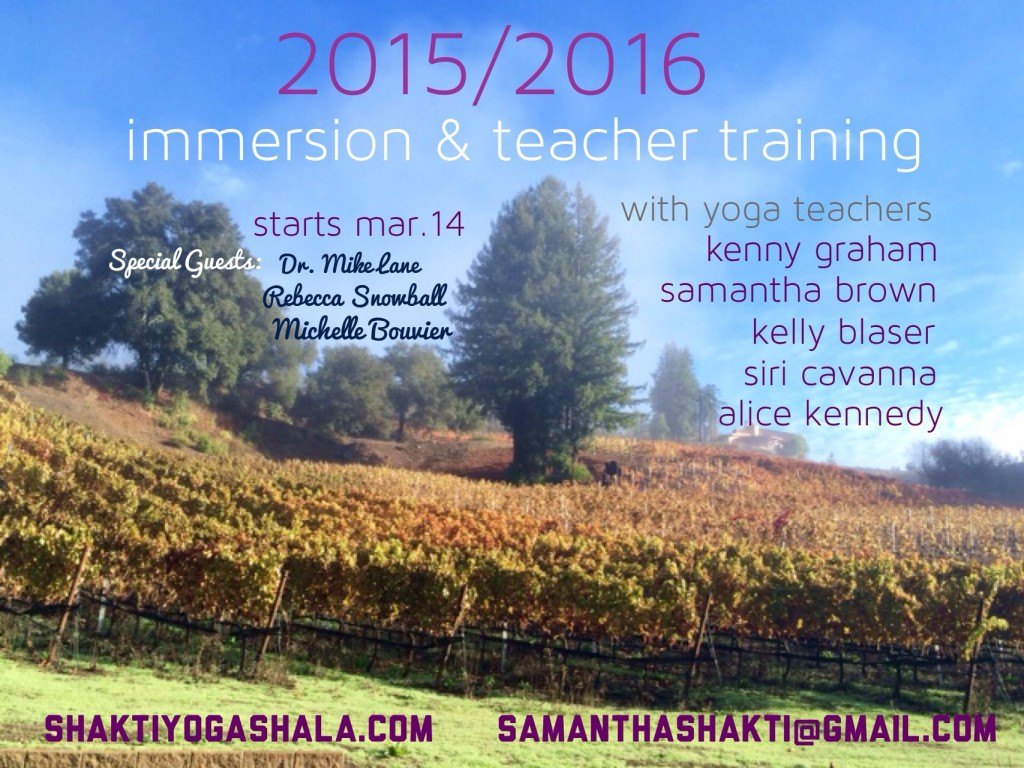 2015-16 Immersion Teacher Training