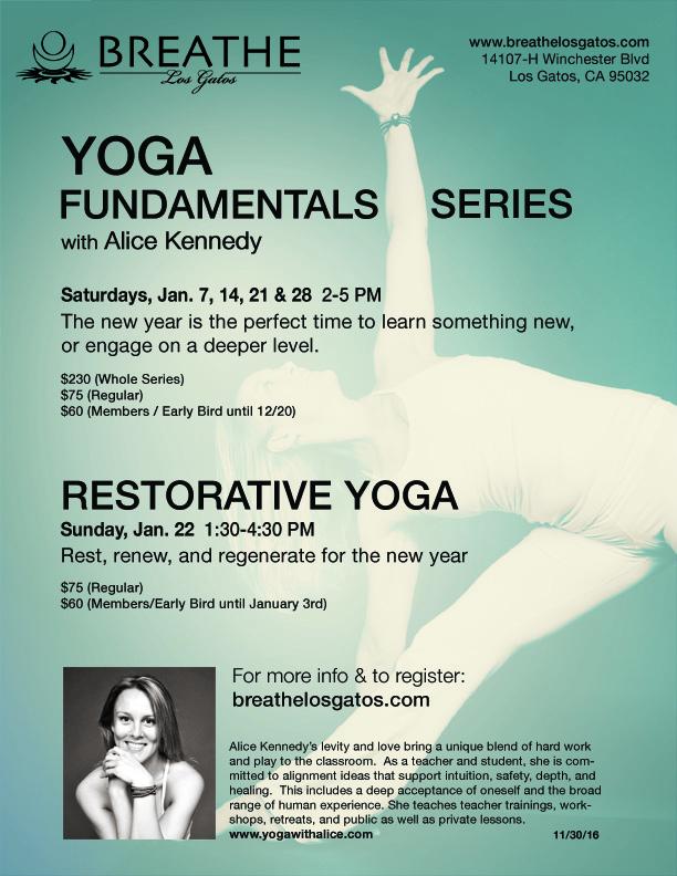 yogafundamentals3